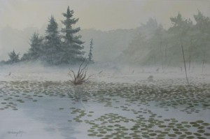 Lilly Island Cove  13x21,